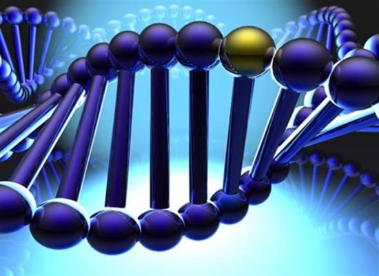 dich-vu-tham-tu-dieu-tra-ADN